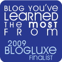 "We're a finalist:  BlogLuxe Awards @ BlogHer – ""Blog You've Learned the Most From"""
