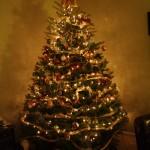 Wordless Wednesday:  O Christmas Tree