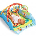 Baby Play Place from Bright Starts