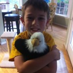 Best Kid's Gift EVER:  Adopt an Animal at the World Wildlife Fund