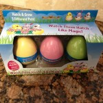 Easter: Hide 'em & Hatch 'Em Eggs Toy