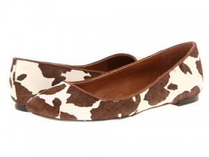 flats-cow