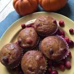 Learning About Eating Paleo & a Recipe: Paleo Pumpkin Cranberry Muffins (Gluten Free Too)