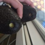How to Tell If An Avocado is Ripe (And Tips on How to Ripen It If It's Not There Yet!)